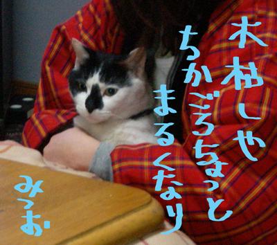 kogarasiya.jpg