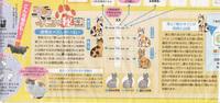 三毛猫の秘密.jpg