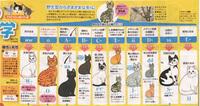 猫の遺伝.jpg