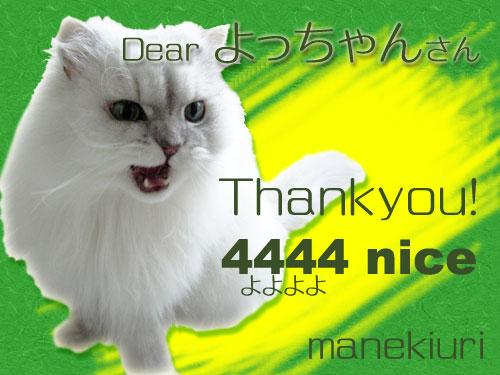 manekiuri-4444-0cad2.jpg